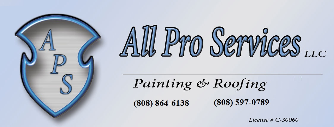 All Pro Services Roofing and Painting Contractor